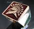 Picture of 21 x BRONZE SQUARE RINGS SPARTAN GLADIATOR BURGUNDY WHOLESALE-LOT