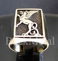 Picture of 21 x BRONZE RINGS GRIFFIN GRIFFON GRYPHON MEDIEVAL WHOLESALE-LOT