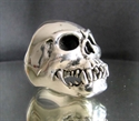 Picture of 21 x STERLING SILVER RINGS ZOMBIE 2 THE UNDEATH SKULL WHOLESALE-LOT