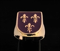 Picture of 21 x BRONZE RINGS WITH 3 FLEUR DE LIS ROYAL COAT OF ARMS SEAL PURPLE EMBLEM WHOLESALE-LOT
