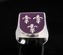Picture of 21 x STERLING SILVER RINGS 3 FLEUR DE LIS ROYAL COAT OF ARMS SEAL PURPLE EMBLEM WHOLESALE-LOT